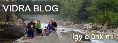 Vidra blog
